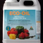 ecooil